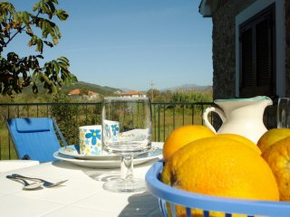 Charming 1 bedroom Vacation Rental in Marina di Casal Velino - Marina di Casal Velino vacation rentals