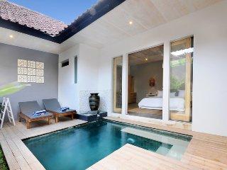 1 bedroom Villa with Internet Access in Sanur - Sanur vacation rentals