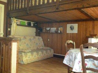 studio aux Eaux-Bonnes (Pyrénées, vallée d'Ossau) - Les Eaux-Bonnes vacation rentals