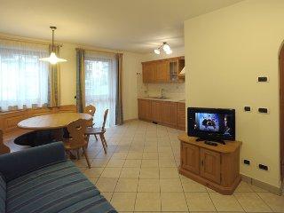 Appartamenti Villa Elisa | 5 | Trilo x 4/6 persone - Falcade vacation rentals