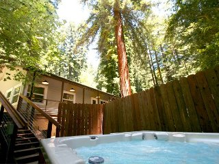 Tree House! Your Own, Personal Retreat! Game room, Hot Tub,WiFi NEW! 3 for 2! - Rio Nido vacation rentals