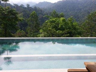 Nice 1 bedroom Villa in Seremban - Seremban vacation rentals