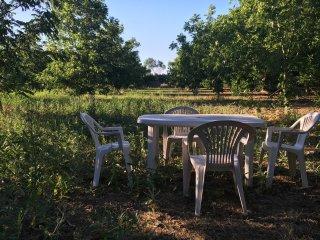 Casetta Carya - Sirgole - Life's little pleasures - Cutrofiano vacation rentals