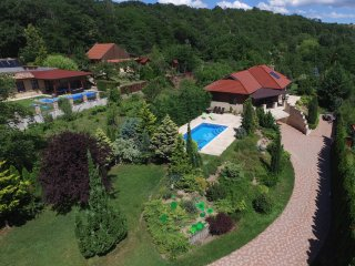 Villa Forest Fot-close to Budapest - Fot vacation rentals