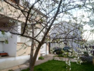 Apartment Irena - Zadar vacation rentals