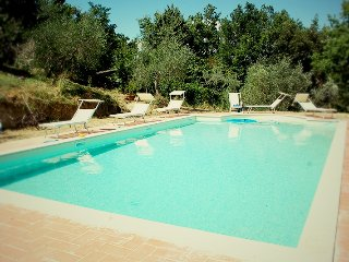 Nice apartment in the heart of tuscan hills - Montepulciano vacation rentals