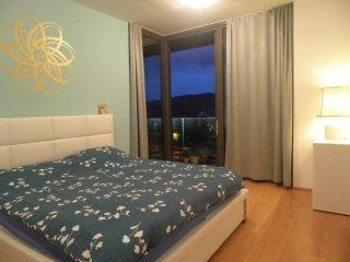 50 Shades of Blue Apartment close to City Center - Ljubljana vacation rentals