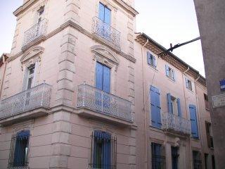 Maison de Maitre, Murviel les Beziers - Murviel-les-Beziers vacation rentals
