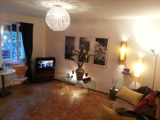 lovely flat in top location with WIFI, extra sofa - Zurich vacation rentals
