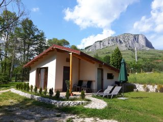 Cottage - Studio 1 - 2 person in Transylvania - Aiud vacation rentals
