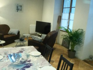 Appart VIP Orléans bord deLoire - Orleans vacation rentals