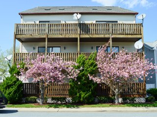 Diamond Bay 5 - Ocean City vacation rentals