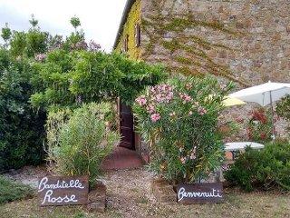 App. Campanula in casale toscano con piscina - Castellina Marittima vacation rentals