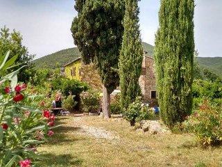 App.ACETOSELLA in casale toscano con piscina - Castellina Marittima vacation rentals