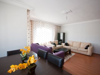 Spacious - Clean - very Economic 4 - Istanbul vacation rentals