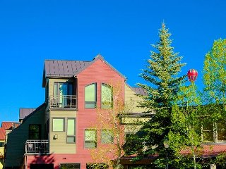 Cimarron Lodge #1. Great views! Ski in/ Ski Out location at Lift 7. Sleeps 4. - Telluride vacation rentals