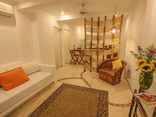 Family/friends apt w/hot tub and beach club BP2 - Playa del Carmen vacation rentals