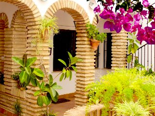 200m Mosquée, Internet-Fiber-Optic & Parking - Cordoba vacation rentals