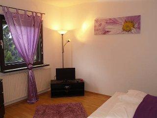 Violett Apartment - Berlin vacation rentals
