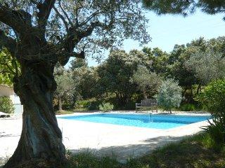 LE PETIT MAZET : garrigue et nature - Lagnes vacation rentals