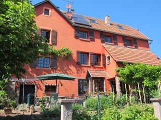 """Gîte en Alsace   """" La Ferme """"  proche Strasbourg - Dinsheim-sur-Bruche vacation rentals"""