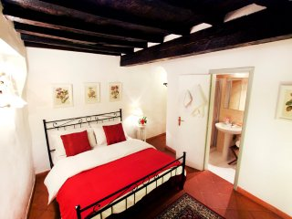 Casa Santa Maria Novella, Characteristic Florentine Apartment, City Center - Florence vacation rentals