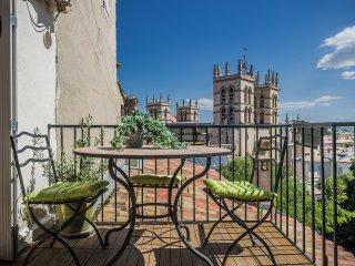 Duplex terrasse vue sur cathedrale - Montpellier vacation rentals