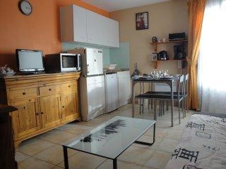 appartement en Camargue(Gard) 15 kms Méditerranée - Saint-Laurent-d Aigouze vacation rentals