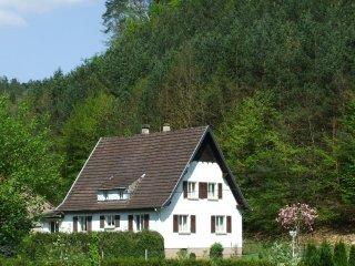 Vos vacances au coeur des Vosges du Nord - Sturzelbronn vacation rentals