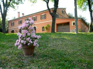 Casa Vacanza La Meridiana tra iil mare e colle - Serrungarina vacation rentals