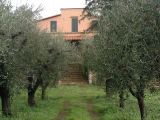 Nice House with Internet Access and Wireless Internet - Corchiano vacation rentals
