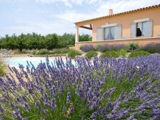 Jolie maison provençale piscine privée vue luberon - Gargas vacation rentals