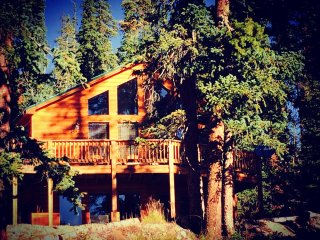 Beautiful, Cozy, Family Cabin near Breckenridge - Fairplay vacation rentals