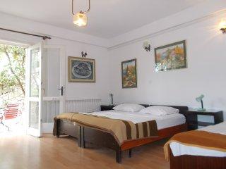 APARTMENT for 3 - Hvar vacation rentals