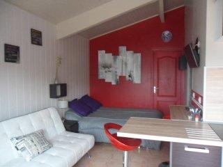 studio avec terrasse en Camargue (climatisé) - Saint-Laurent-d Aigouze vacation rentals