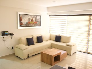 Charming 2 bedroom Apartment in Guadalajara - Guadalajara vacation rentals