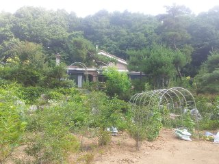 Cozy Gongju Private room rental with A/C - Gongju vacation rentals