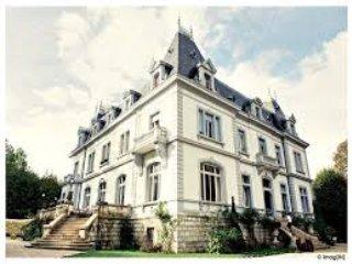 La vie de Château   ... et l'esprit d'aventure - Viry vacation rentals