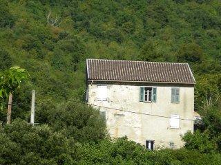 Studio Duplex SANTA LUCIA DI MERCURIO - Corsica vacation rentals
