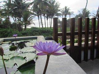 Whispering Ocean - Asian Philosophers Edge (APE) - Panadura vacation rentals