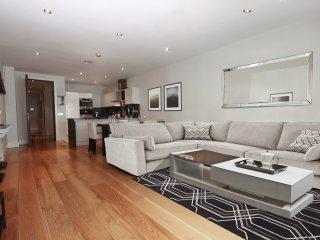 Luxury Apartment in Georgian Dublin - Dublin vacation rentals