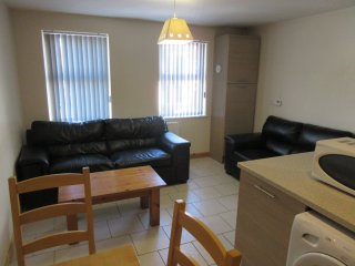 University Lodge ~ Queens Quarter Belfast - Belfast vacation rentals