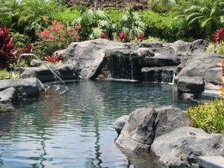 Beautiful 3 BR / 3 BA Palm Villas Townhome - Kamuela vacation rentals