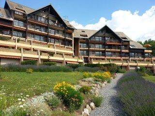 Appartement Rez de Jardin, Plan d' Eau d' Embrun - Embrun vacation rentals