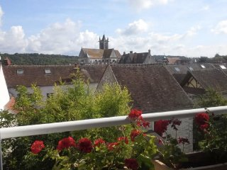 Lovely cozy house+ private garden - Moret-sur-Loing vacation rentals