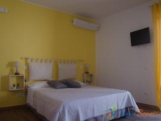Baia Benessere :  Camera Limone - Santa Severa vacation rentals