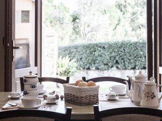La villa del cedro-piano terra - Civitella in Val di Chiana vacation rentals