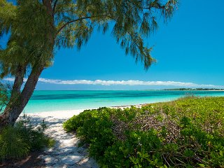 Private beachfront villa on Grace Bay sleeps 12 - Leeward vacation rentals