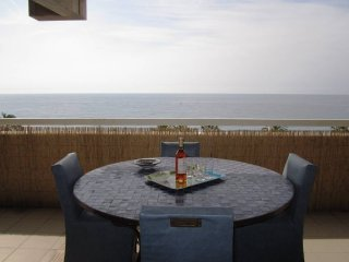 Le Sea view: 4 beds flat terrace ac, parking sea - Nice vacation rentals