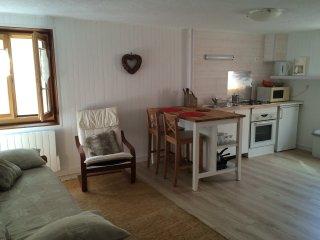 Studio en plein coeur de Ceillac en Queyras - Ceillac vacation rentals